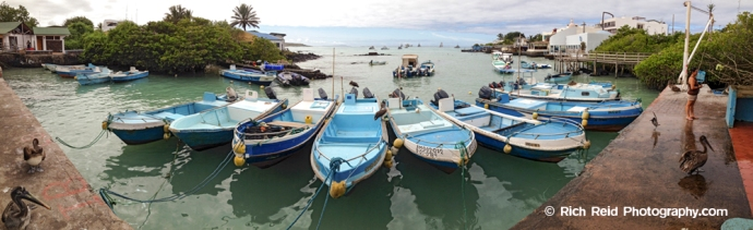 Panorama of fishing pangas moored in Puerto Ayora harbor on Santa Cruz Island in the Galapagos Islands, Ecuador.