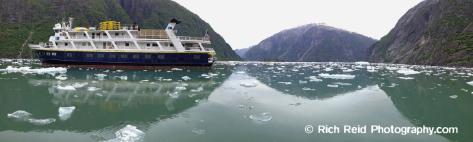 National Geographic Sea Lion in Tracy Arm near South Sawyer Glacier in Southeast Alaska.