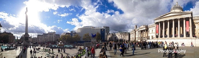 Panorama of Nelson's Column and the National Gallery in Trafalgar Square in London, UK.