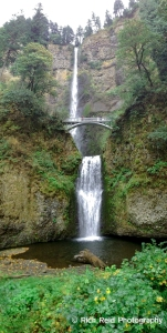 Vertical panorama of Multnomah Falls in the Columbia River Gorge, Oregon.