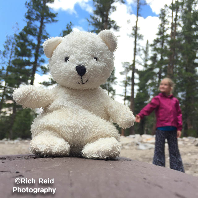 KNOT FOR SALE.  Juxiposed stuffie big bear at Mammoth Lakes, California.